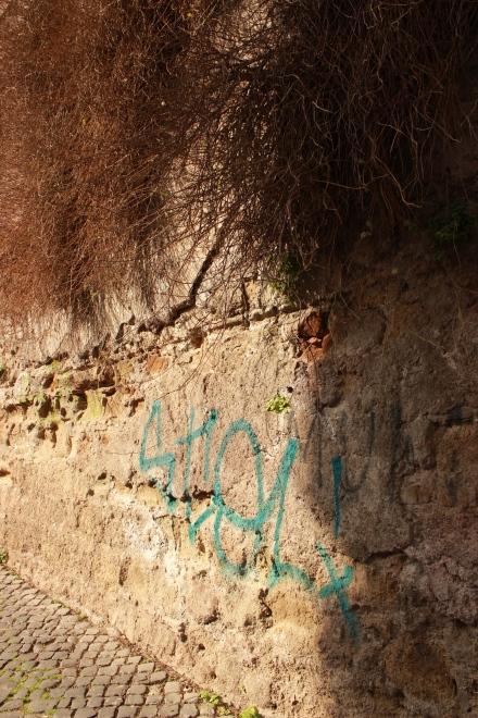 Yup, It's graffiti again. Never boring, is it?
