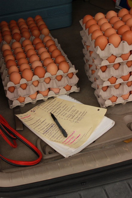 Free range, organic, straight from the farm eggs...need I say more?